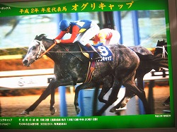 平成2年代表馬オグリキャップ!